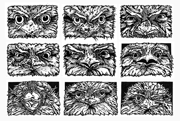 Tawny Expressions (small)