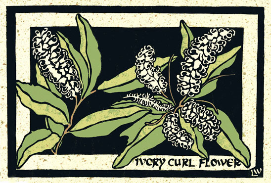 Ivory Curl Flower