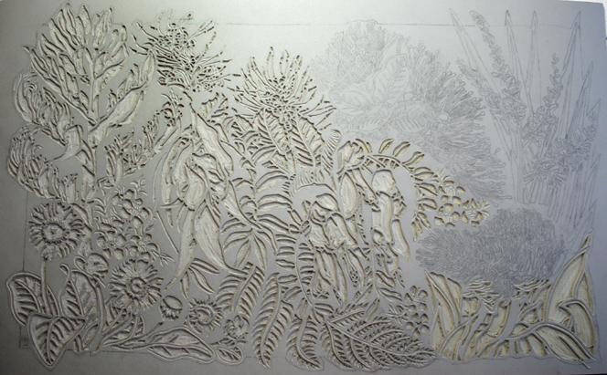 New zealand wildflowers art studio diary soulsongart