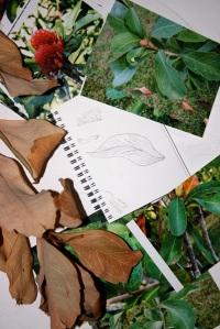 Designing linocuts 1