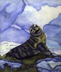 Seal Drawing Illustration