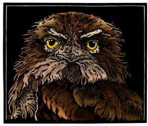 Tawny Frogmouth Stare Linocut