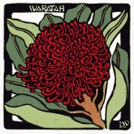 25. Waratah - Linocut