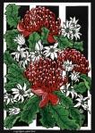 82. Waratahs & Flannel Flowers  - Linocut