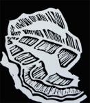 Waratah Leaves Sample Linocut carving