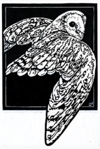 barn-owl-designproofweb