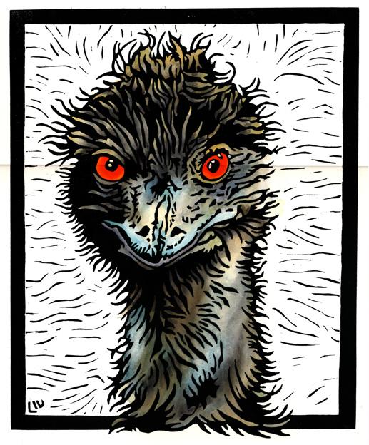 Mad Emu 1WEB