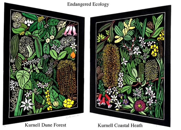 Australian Wildflower Linocut -  Kurnell Wildflowers - Endangered Ecology