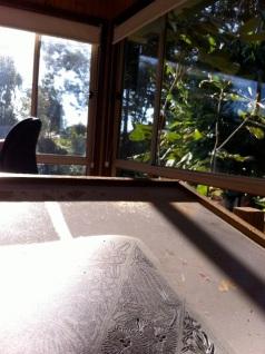 Studio view - caving lino
