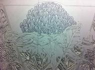 Lino carving progressions - Waratah 2