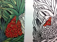 This shows a handcoloured or watercolour painted section on one print & one without colour