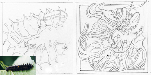 AUS ALPHABET CATERPILLAR DRAWINGS WEB