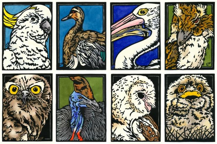 Snapshot - Birds SET OF 8 - websmall