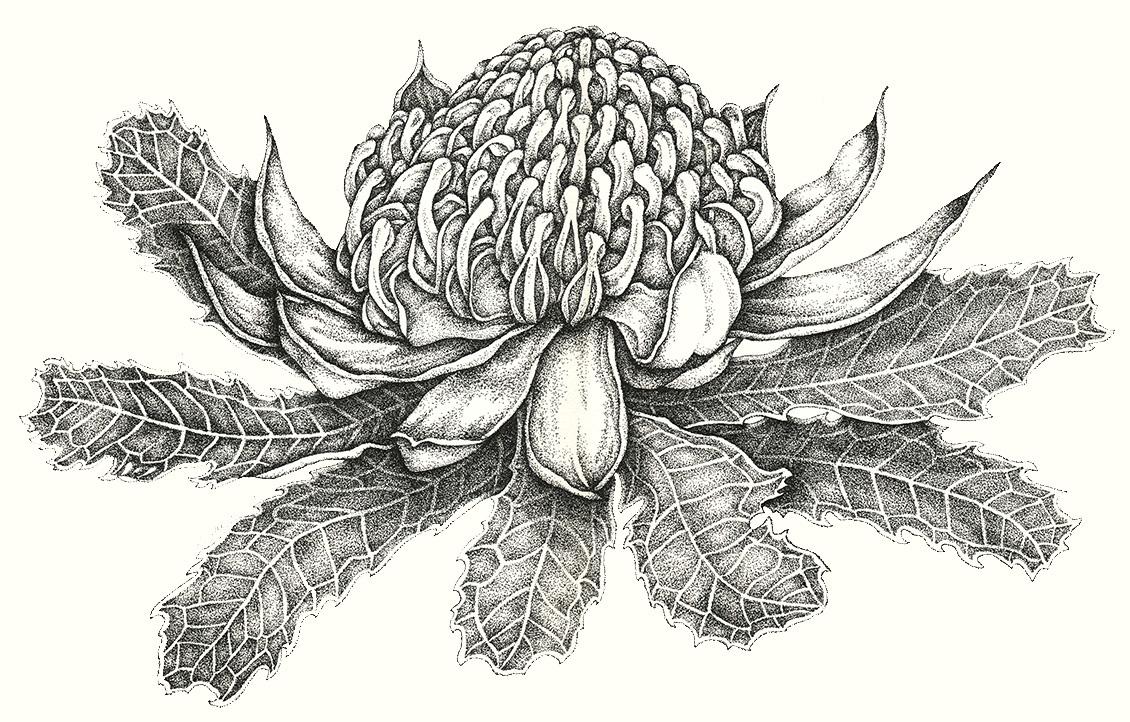 Art Studio Diary Soulsongart Australian Linocut Artist
