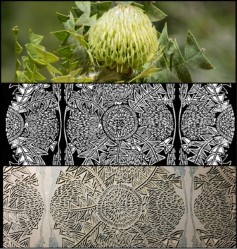 *WILDFLORAL BANKSIA INSPIRATION TO CARVING